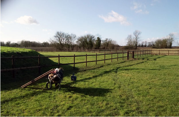 Bressingham Farm Fence Case Study